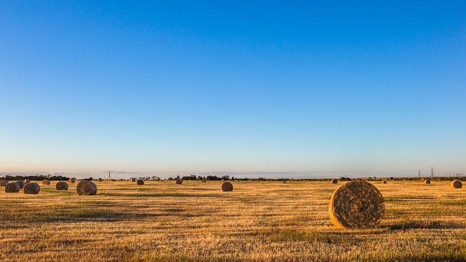 Hay, Australia, landscape, Leica, Jamie Chan, No Foreign Lands, Road trip
